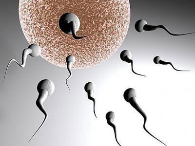 6 bước liệu pháp sinh sản-